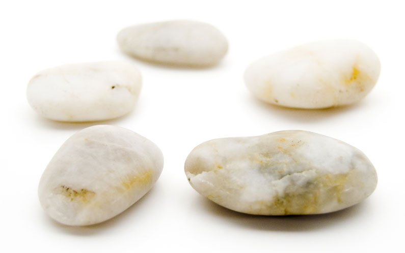 Data Mining: Five Smooth Stones